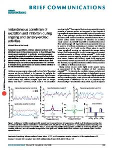 Instantaneous correlation of excitation and inhibition during ongoing ...