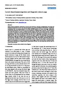 Larval Ascaris suum migration and diagnostic value in ...