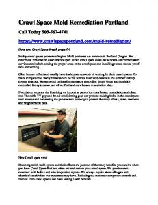 Mold Remediation.pdf