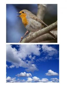My Heavenly Father Loves Me Pictures copy.pdf
