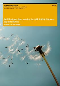 Platform Support Matrix for SAP Business One, version for SAP ...