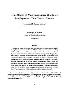 The Effects of Macroeconomic Shocks on Employment