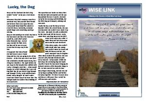 Wise Link August 2009
